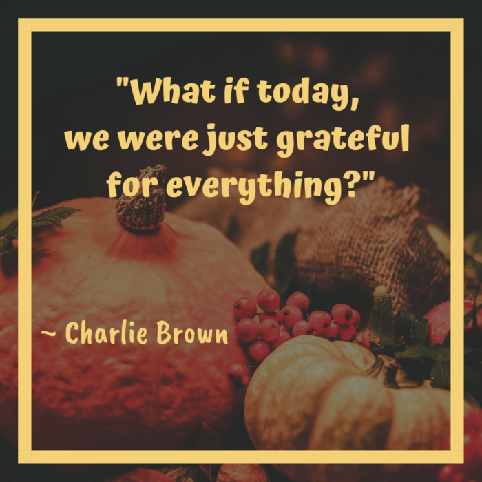 What if today, we were just grateful for everything? ~ Charlie Brown
